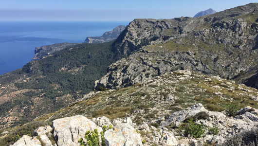 Trek'n Learn Mallorca